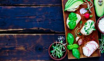 Prestação de Serviços Especializados no Vegetarianismo e Veganismo